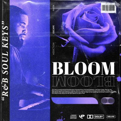 BLOOM: R&B Soul Keys [Free Taster Pack]