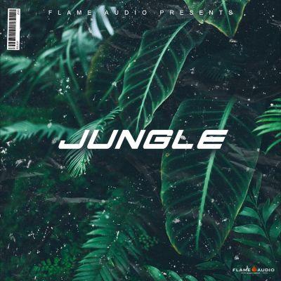 Jungle: Lost Hip Hop Melodies