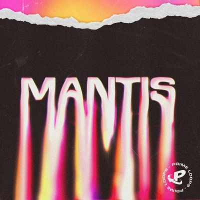 MANTIS: Space Trap Beats