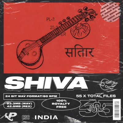 Soulful Sitar Melodies
