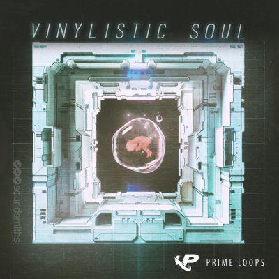 Vinylistic Soul