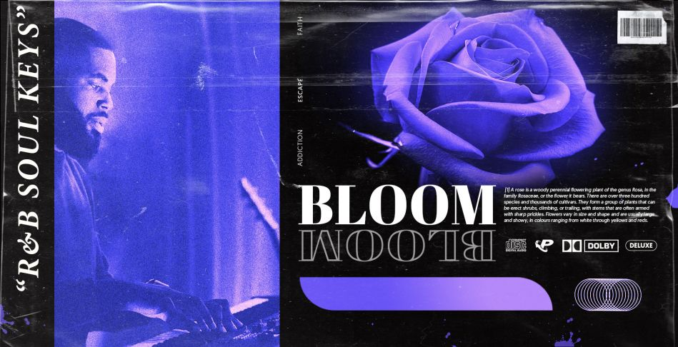 BLOOM: R&B Soul Keys