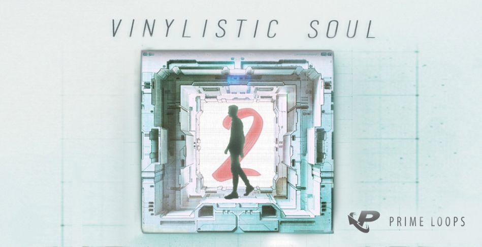 Vinylistic Soul 2