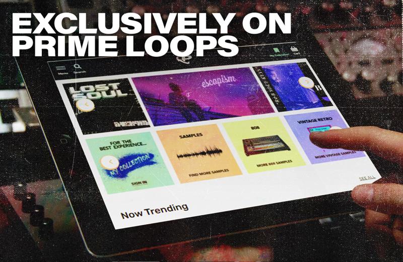 EXCLUSIVE | PRIME LOOPS
